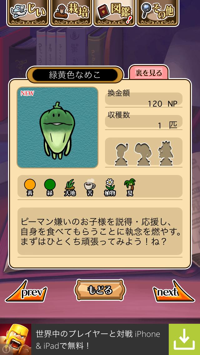 「010 緑黄色なめこ」NEOなめこ栽培キット
