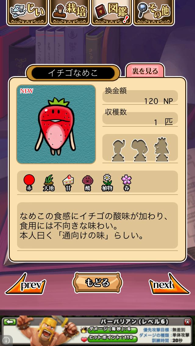 「016 イチゴなめこ」NEOなめこ栽培キット