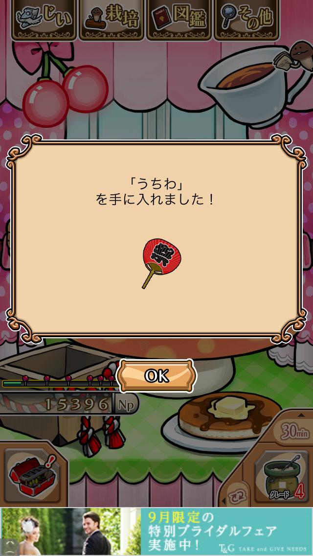 「うちわ」NEOなめこ栽培キット キャラぱふぇカフェ