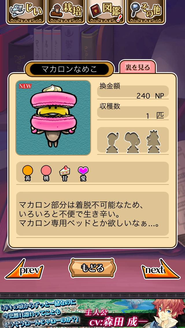 「105 マカロンなめこ」NEOなめこ栽培キット キャラぱふぇカフェ