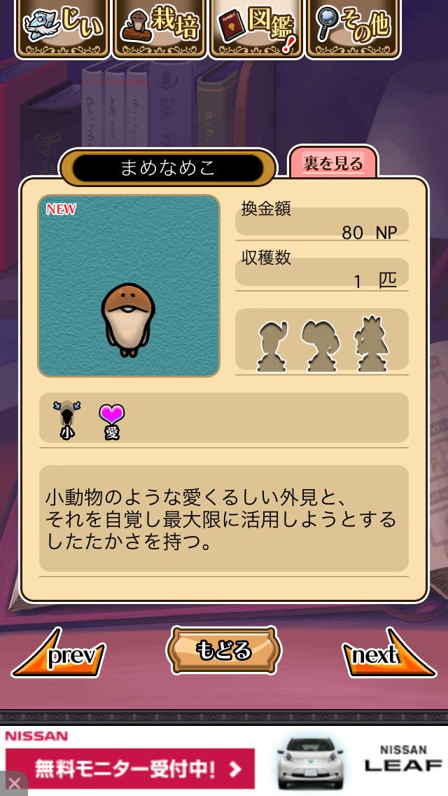 「028 まめなめこ」NEOなめこ栽培キット