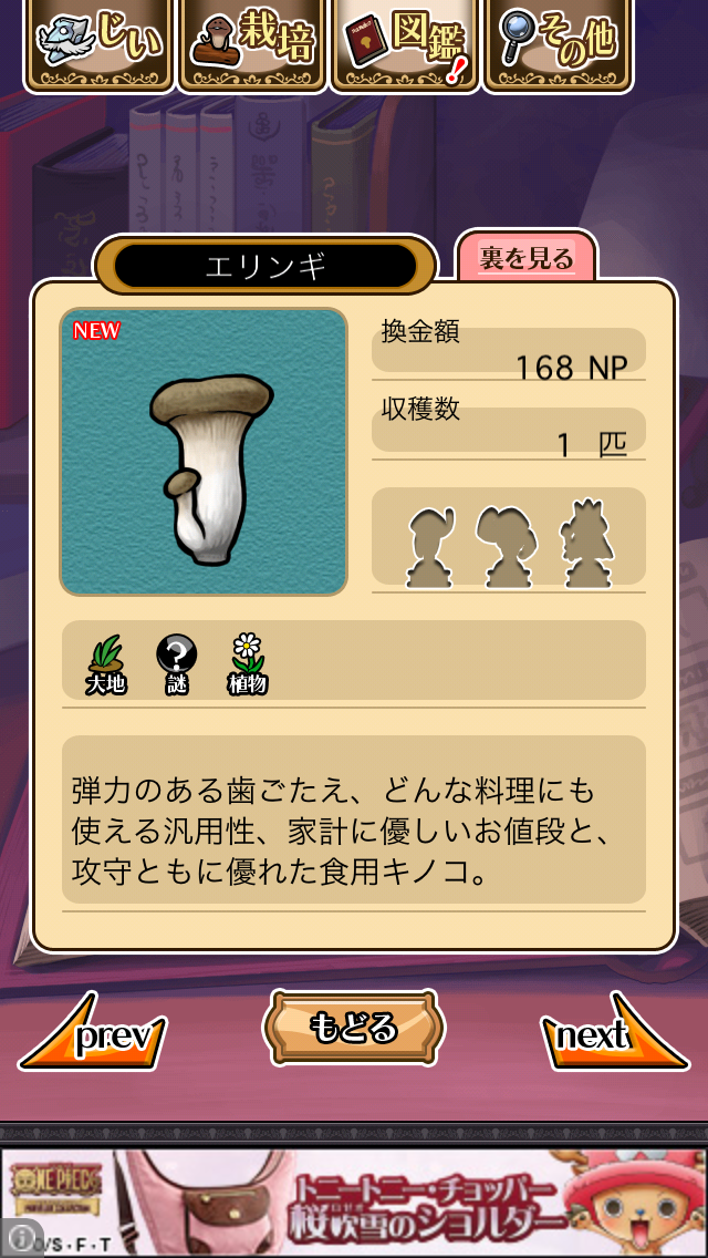 「058 エリンギ」NEOなめこ栽培キット