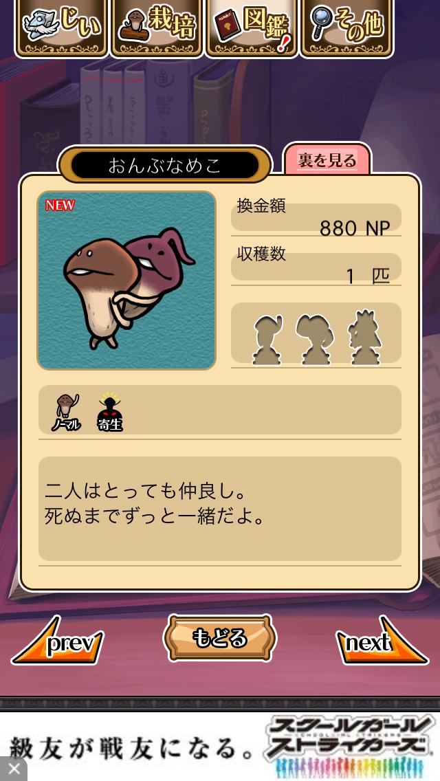 「063 おんぶなめこ」NEOなめこ栽培キット