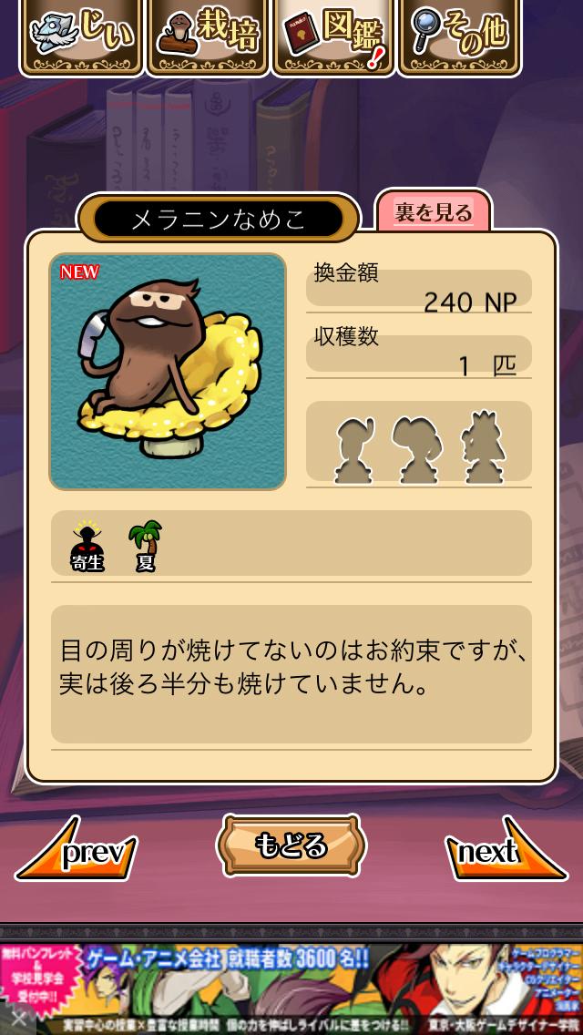 「092 メラニンなめこ」NEOなめこ栽培キット