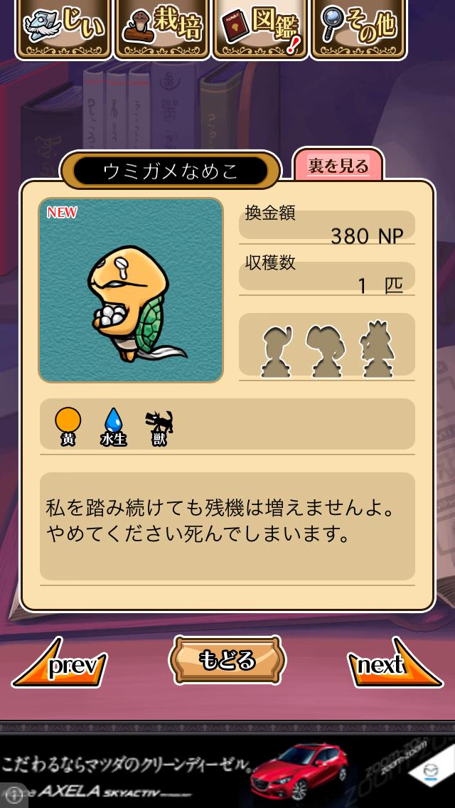 「088 ウミガメなめこ」NEOなめこ栽培キット