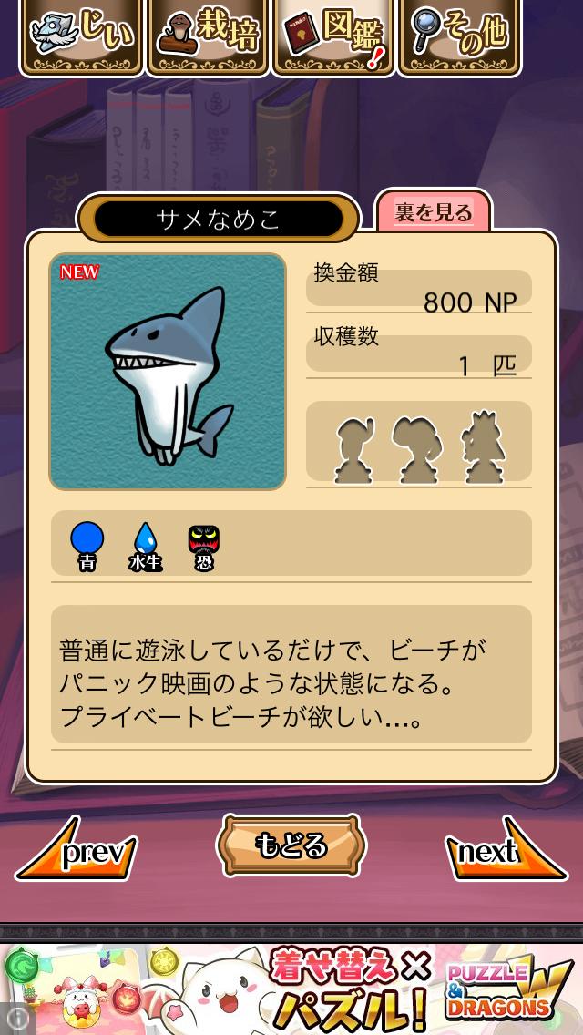 「093 サメなめこ」NEOなめこ栽培キット