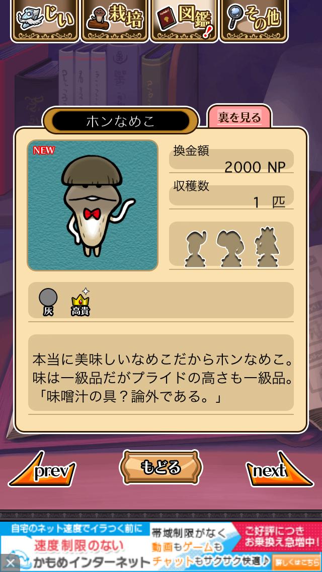 「064 ホンなめこ」NEOなめこ栽培キット